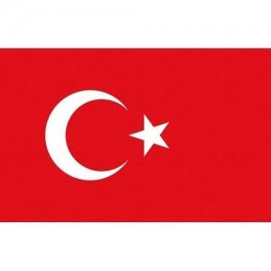 Flag Turkey 20x30cm printed