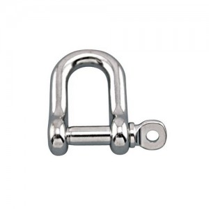 D Shackle 10mm Trem